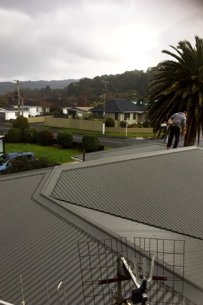New roof for your home in Wellington